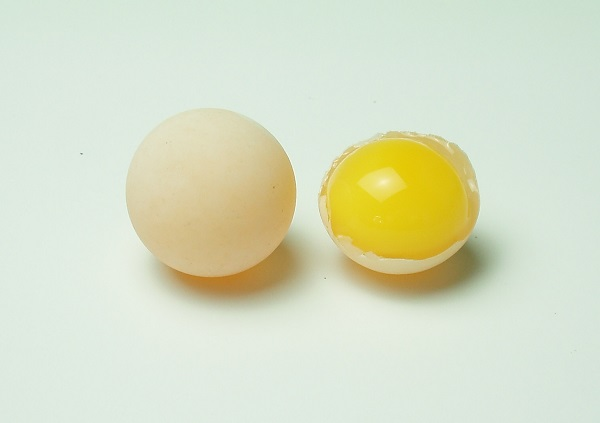 スッポン卵
